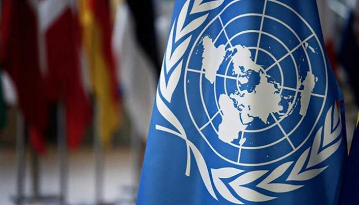 Syria Constitutional Committee 'on hold' after three members test positive for COVID-19: U.N.